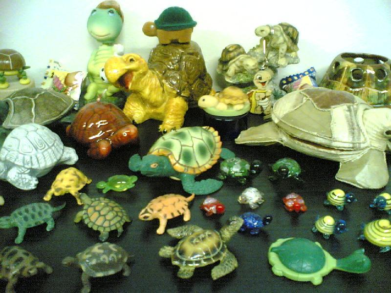 Sbírka želviček II.