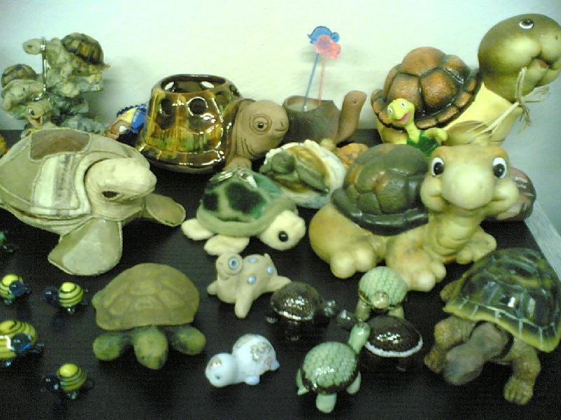 Sbírka želviček III.